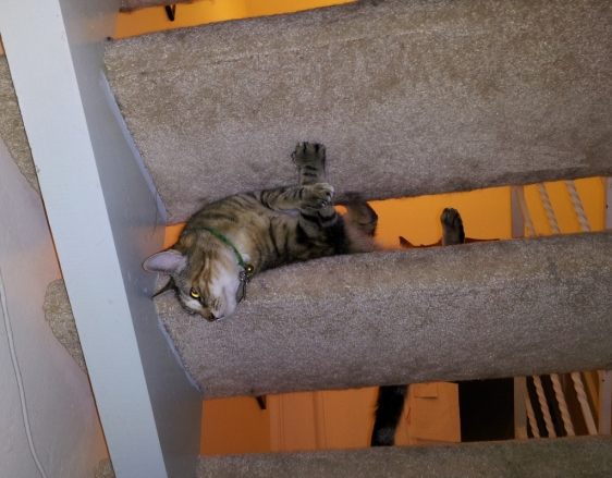 Kaja On(?) the Stairs